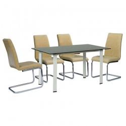 Bộ bàn ghế ăn B57, G55