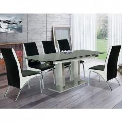 Bộ bàn ghế ăn B56, G56